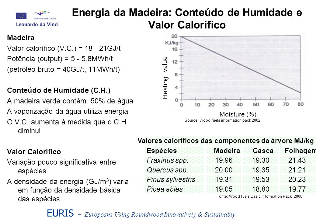 Energia da Madeira: Conteúdo de Humidade e Valor Calorífico