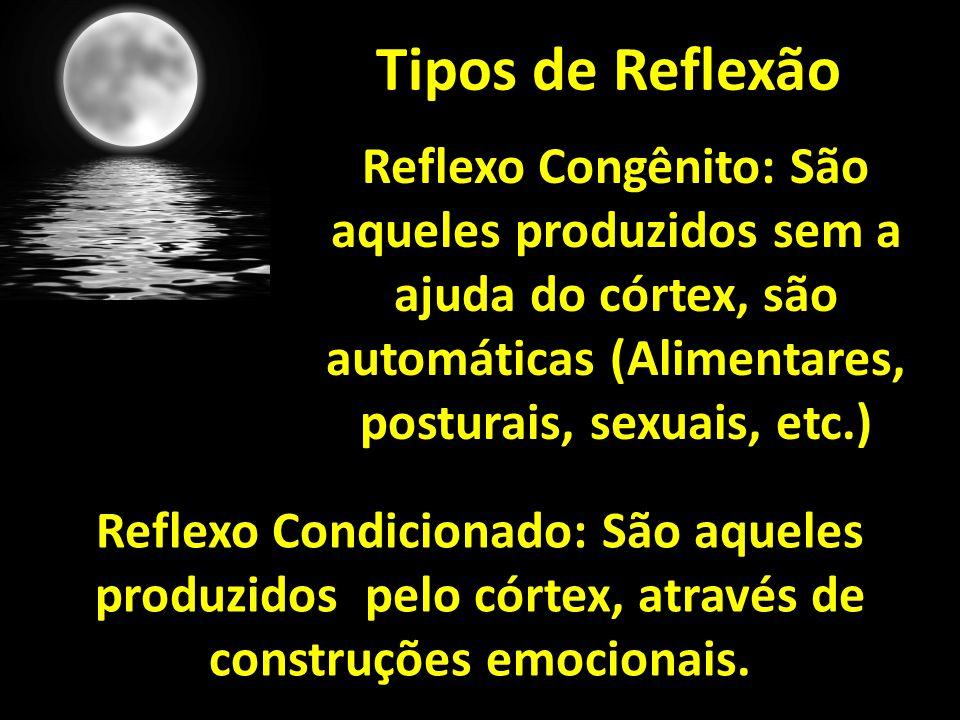 Tipos de Reflexão Reflexo Congênito: São aqueles produzidos sem a ajuda do córtex, são automáticas (Alimentares, posturais, sexuais, etc.)