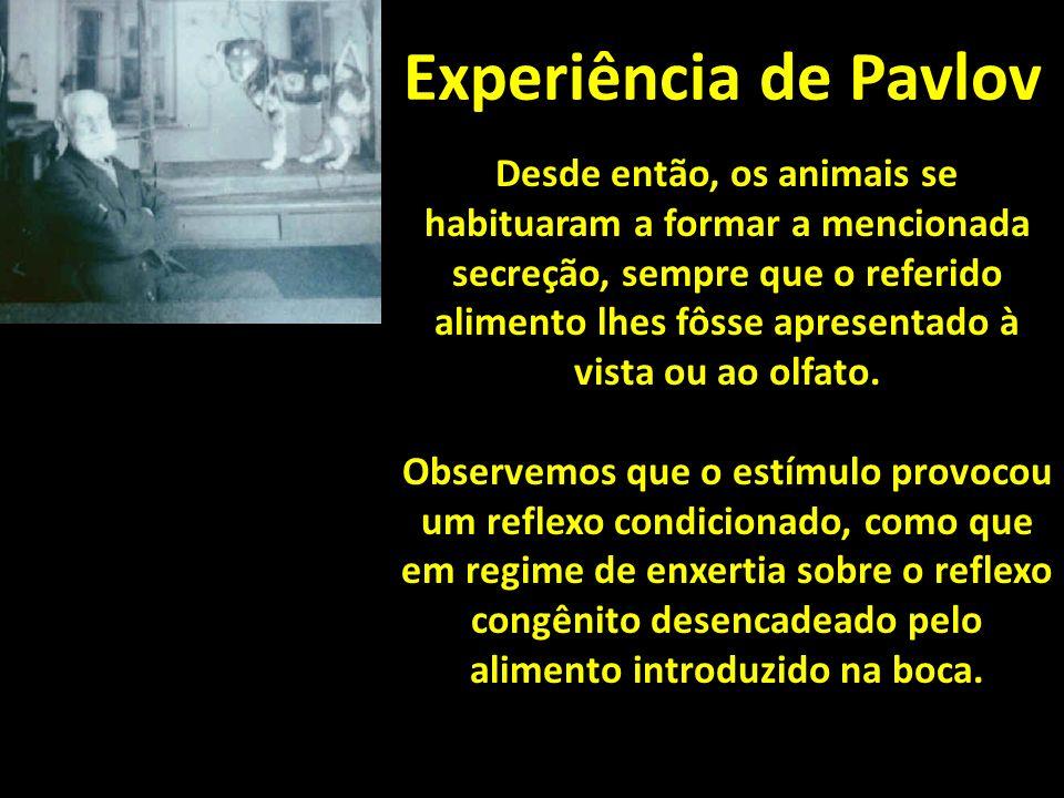 Experiência de Pavlov