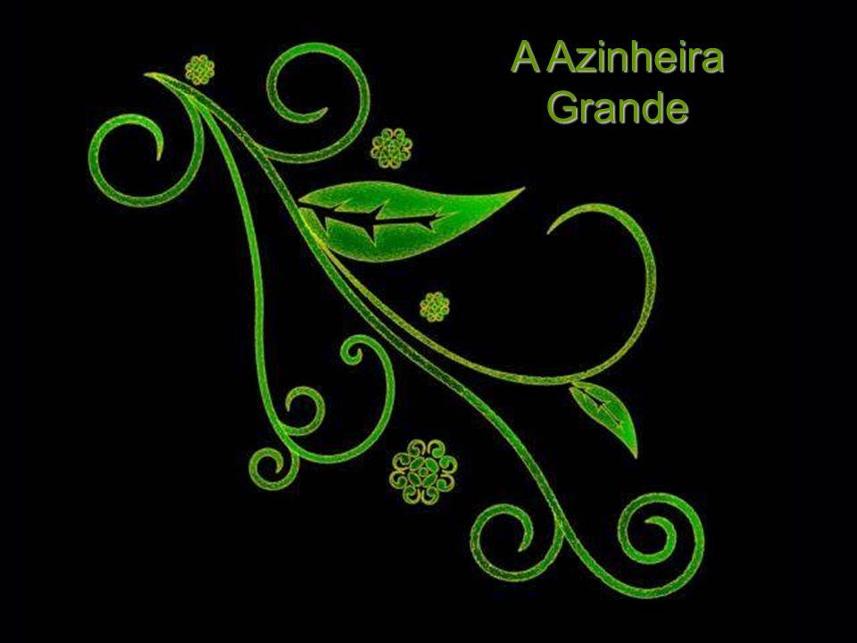 A Azinheira Grande