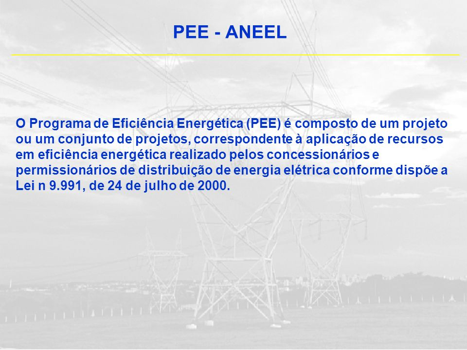 PEE - ANEEL