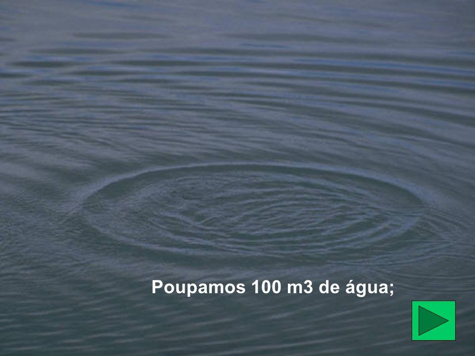 Poupamos 100 m3 de água;