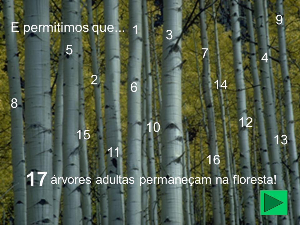 9 E permitimos que... 1. 3. 5. 7. 4. 2.