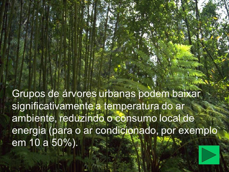 Grupos de árvores urbanas podem baixar significativamente a temperatura do ar ambiente, reduzindo o consumo local de energia (para o ar condicionado, por exemplo em 10 a 50%).