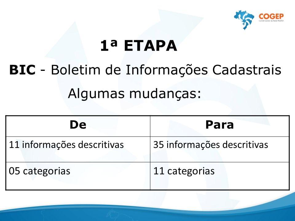 1ª ETAPA BIC - Boletim de Informações Cadastrais Algumas mudanças: De