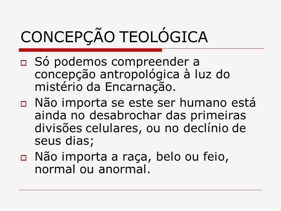 CONCEPÇÃO TEOLÓGICA Só podemos compreender a concepção antropológica à luz do mistério da Encarnação.