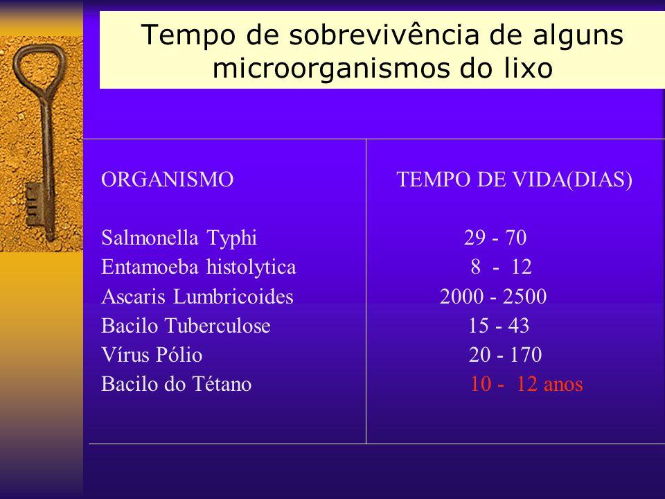 Tempo de sobrevivência de alguns microorganismos do lixo