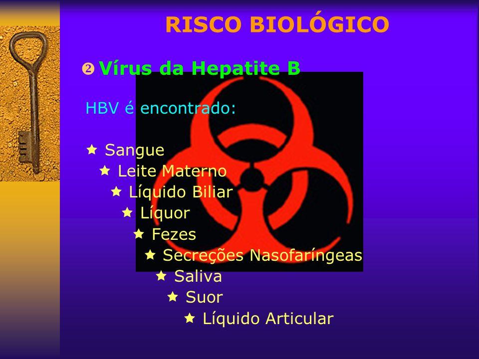 RISCO BIOLÓGICO Vírus da Hepatite B  Sangue  Leite Materno
