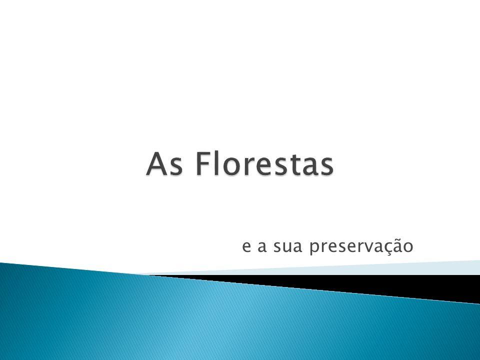 As Florestas e a sua preservação