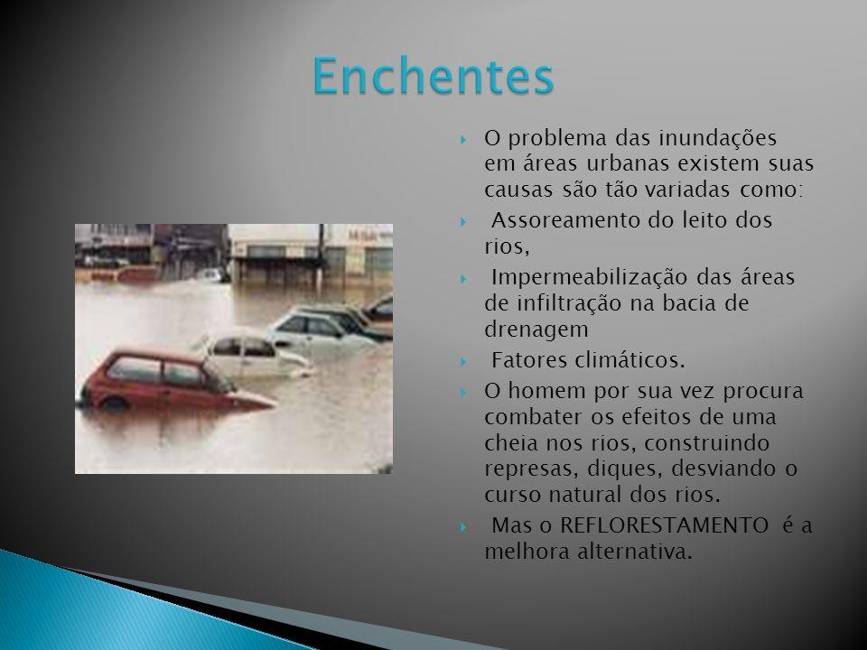 Enchentes O problema das inundações em áreas urbanas existem suas causas são tão variadas como: Assoreamento do leito dos rios,