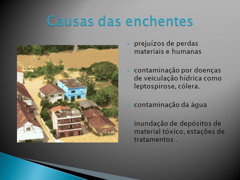 Causas das enchentes prejuízos de perdas materiais e humanas