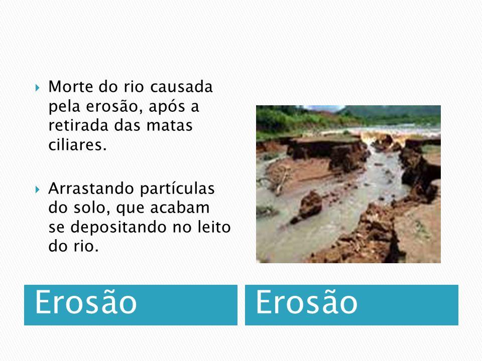Morte do rio causada pela erosão, após a retirada das matas ciliares.