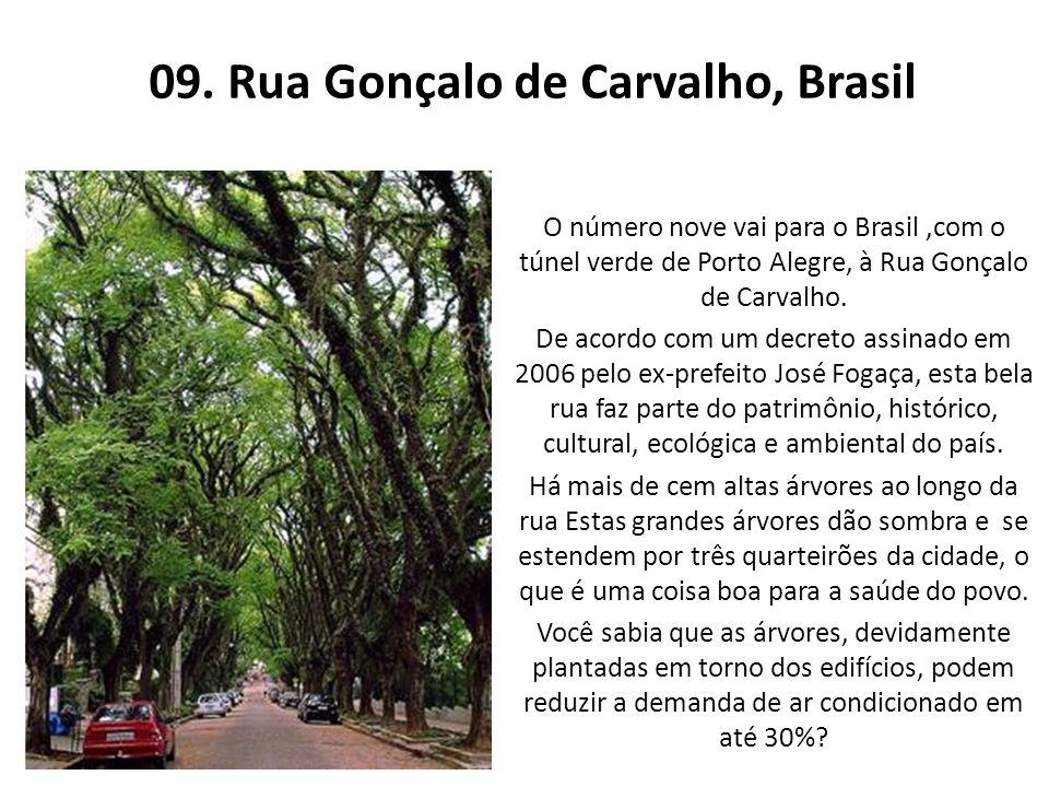 09. Rua Gonçalo de Carvalho, Brasil