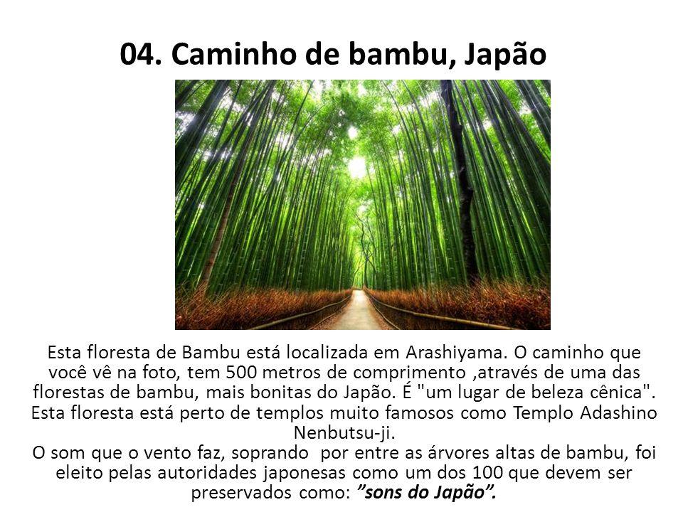 04. Caminho de bambu, Japão