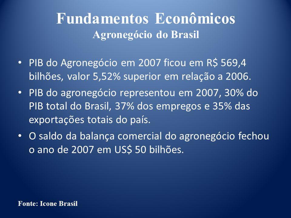 Fundamentos Econômicos Agronegócio do Brasil