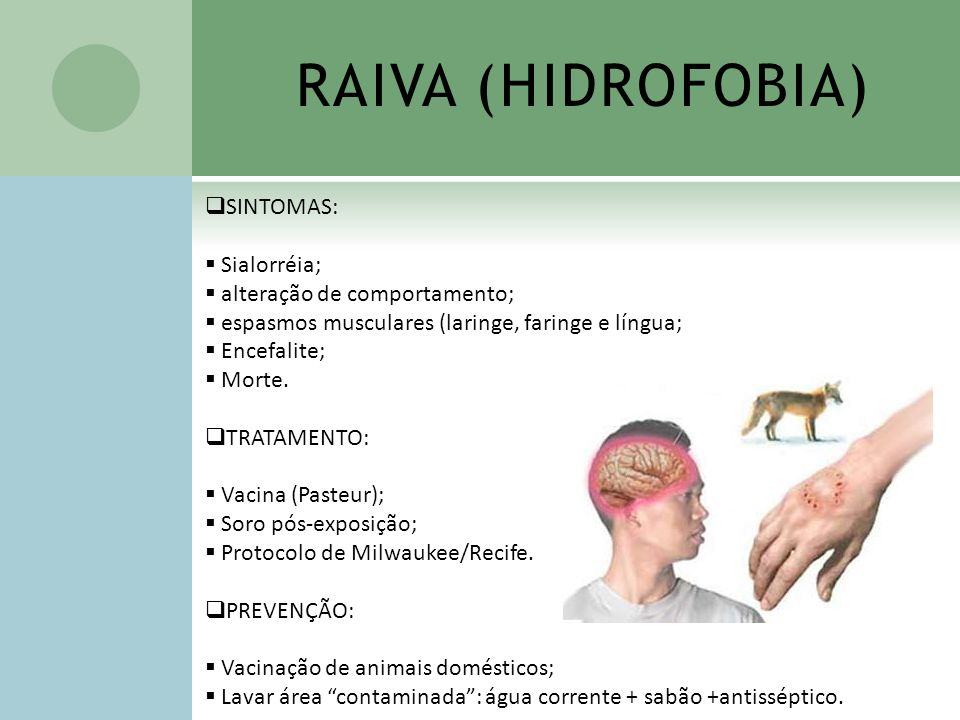 RAIVA (HIDROFOBIA) SINTOMAS: Sialorréia; alteração de comportamento;