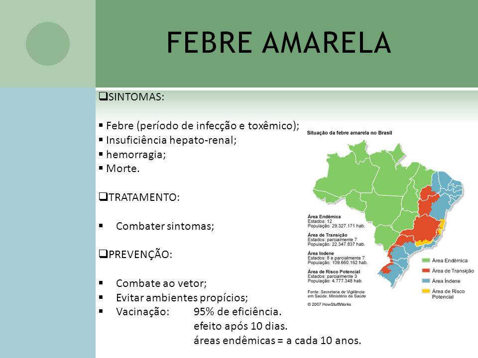 FEBRE AMARELA SINTOMAS: Febre (período de infecção e toxêmico);