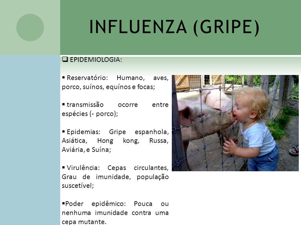 INFLUENZA (GRIPE) EPIDEMIOLOGIA: