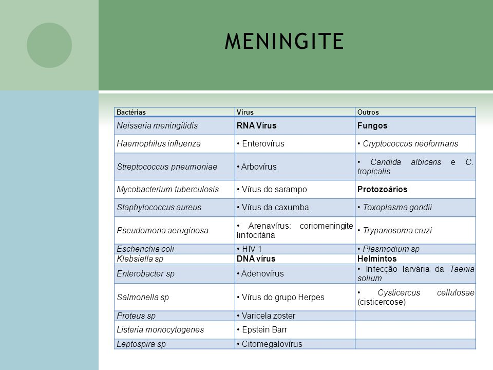 MENINGITE Neisseria meningitidis RNA Vírus Fungos