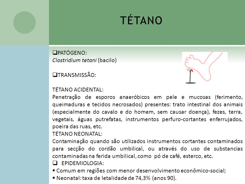 TÉTANO PATÓGENO: Clostridium tetani (bacilo) TRANSMISSÃO: