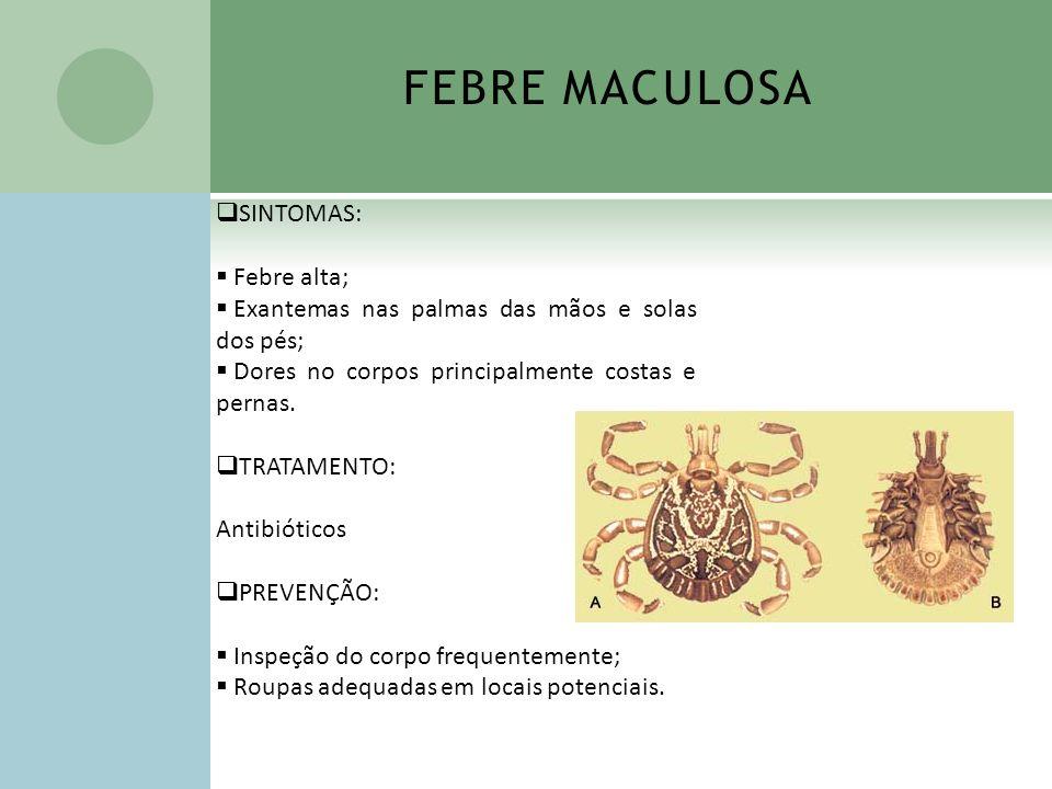 FEBRE MACULOSA SINTOMAS: Febre alta;