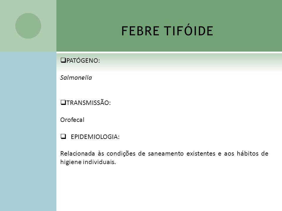 FEBRE TIFÓIDE PATÓGENO: Salmonella TRANSMISSÃO: Orofecal
