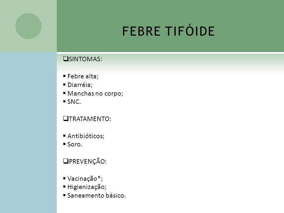 FEBRE TIFÓIDE SINTOMAS: Febre alta; Diarréia; Manchas no corpo; SNC.