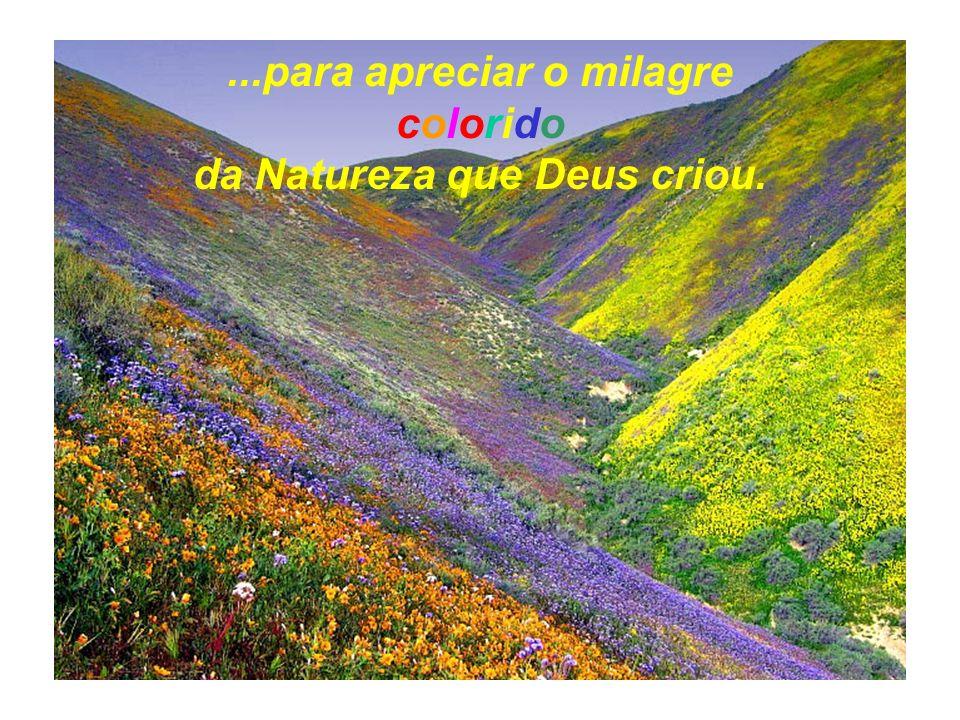 ...para apreciar o milagre da Natureza que Deus criou.