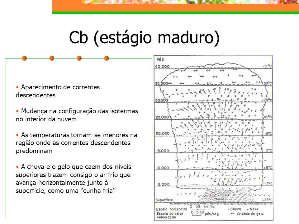 Cb (estágio maduro) Aparecimento de correntes descendentes