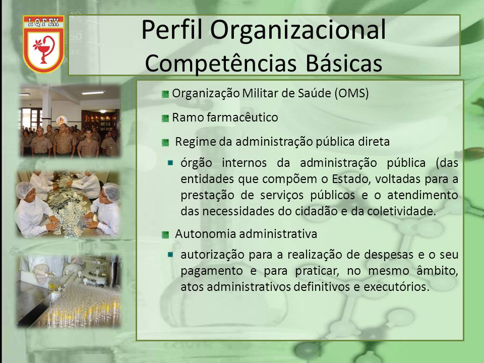Perfil Organizacional Competências Básicas