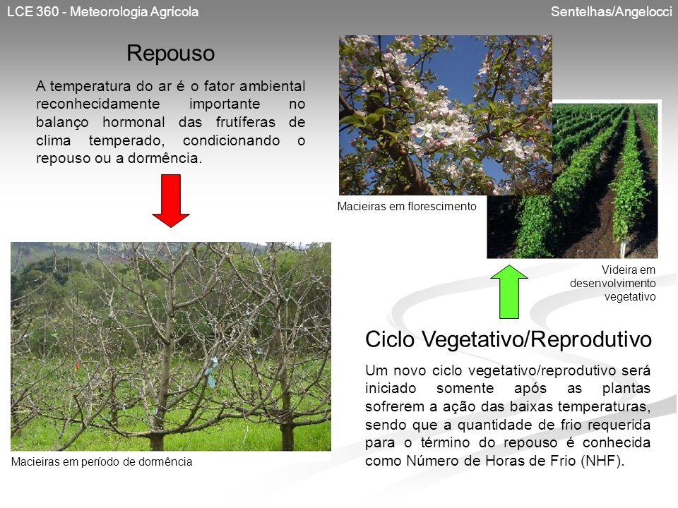 Ciclo Vegetativo/Reprodutivo