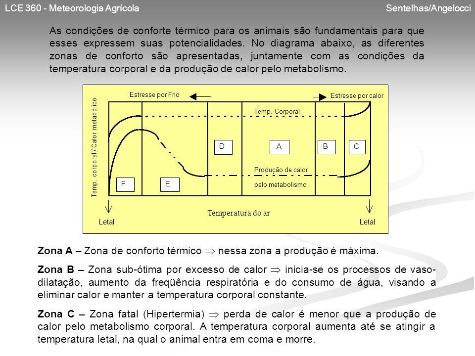 Temp. corporal / Calor metabólico