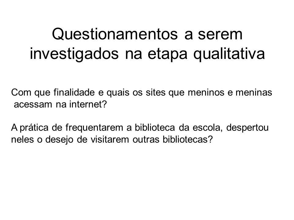 Questionamentos a serem investigados na etapa qualitativa