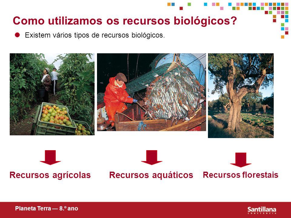 Como utilizamos os recursos biológicos
