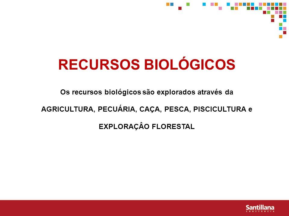 RECURSOS BIOLÓGICOS Os recursos biológicos são explorados através da AGRICULTURA, PECUÁRIA, CAÇA, PESCA, PISCICULTURA e EXPLORAÇÂO FLORESTAL.