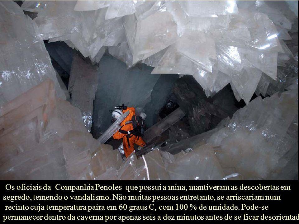 Os oficiais da Companhia Penoles que possui a mina, mantiveram as descobertas em segredo, temendo o vandalismo. Não muitas pessoas entretanto, se arriscariam num