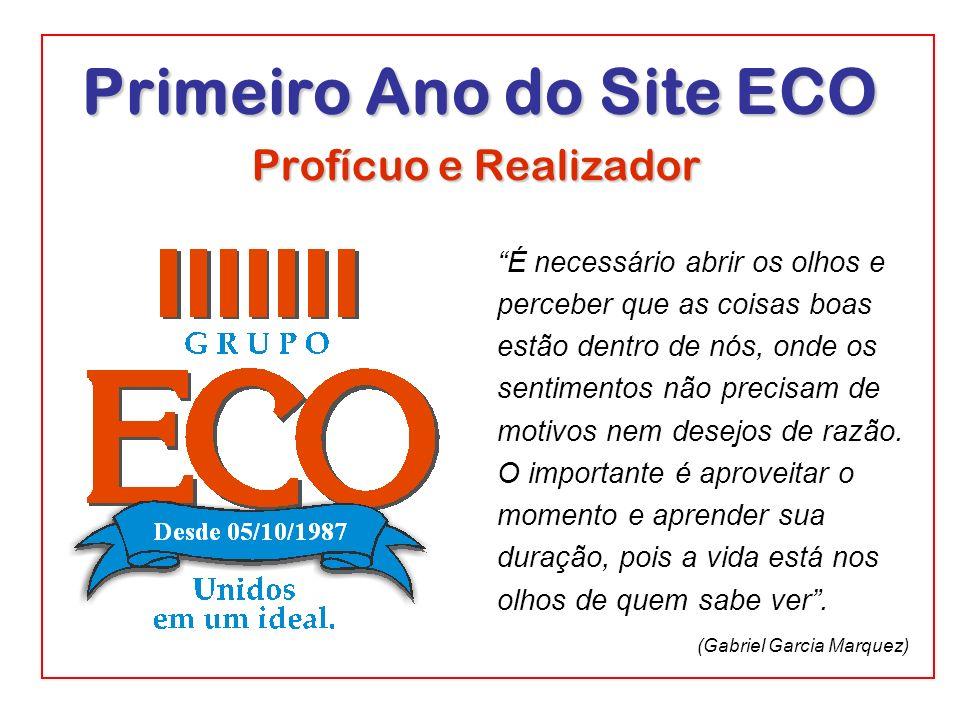 Primeiro Ano do Site ECO