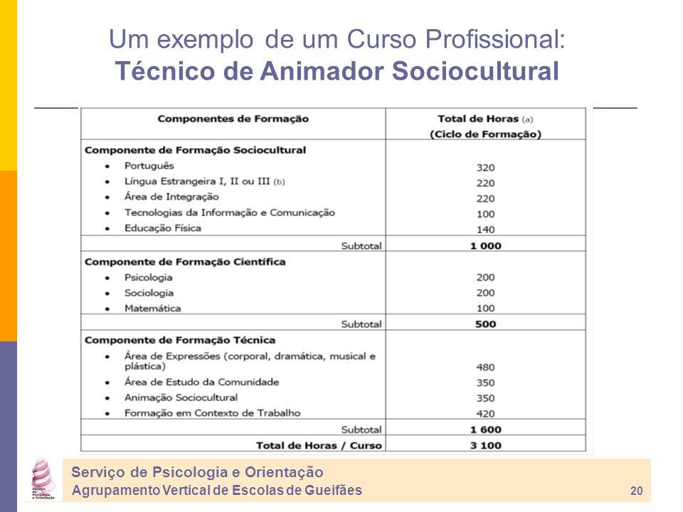 Um exemplo de um Curso Profissional: Técnico de Animador Sociocultural