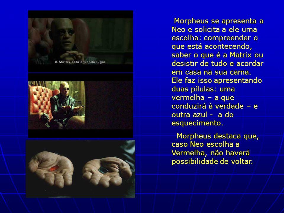 Morpheus se apresenta a Neo e solicita a ele uma escolha: compreender o que está acontecendo, saber o que é a Matrix ou desistir de tudo e acordar em casa na sua cama. Ele faz isso apresentando duas pílulas: uma vermelha – a que conduzirá à verdade – e outra azul - a do esquecimento.