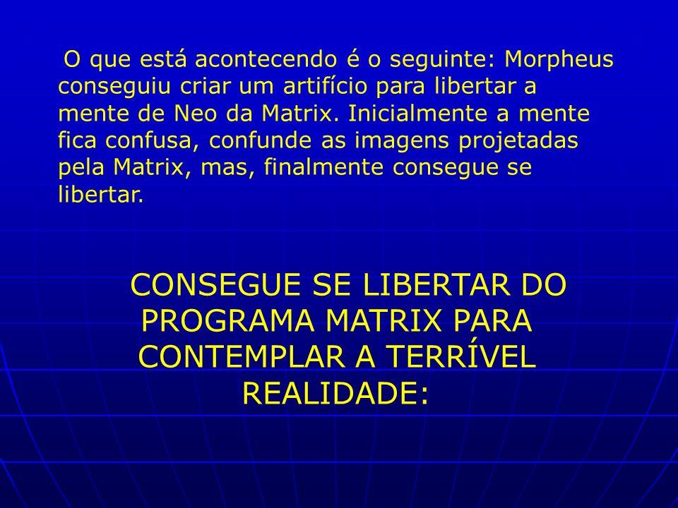 O que está acontecendo é o seguinte: Morpheus conseguiu criar um artifício para libertar a mente de Neo da Matrix. Inicialmente a mente fica confusa, confunde as imagens projetadas pela Matrix, mas, finalmente consegue se libertar.