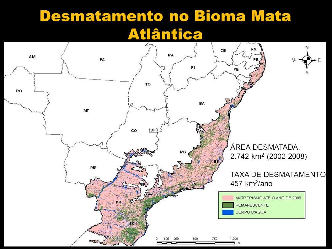 Desmatamento no Bioma Mata Atlântica