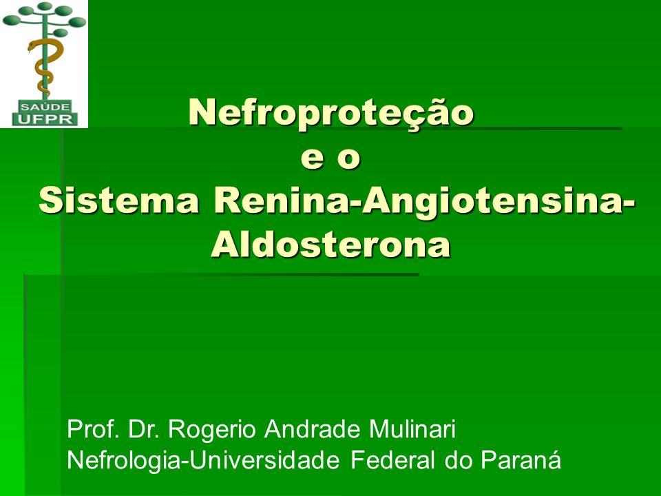 Nefroproteção e o Sistema Renina-Angiotensina-Aldosterona