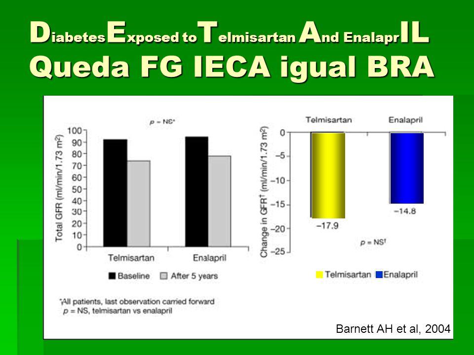 DiabetesExposed toTelmisartan And EnalaprIL Queda FG IECA igual BRA