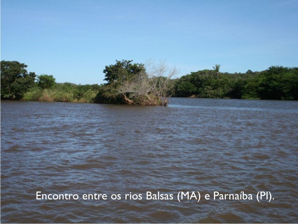Encontro entre os rios Balsas (MA) e Parnaíba (PI).