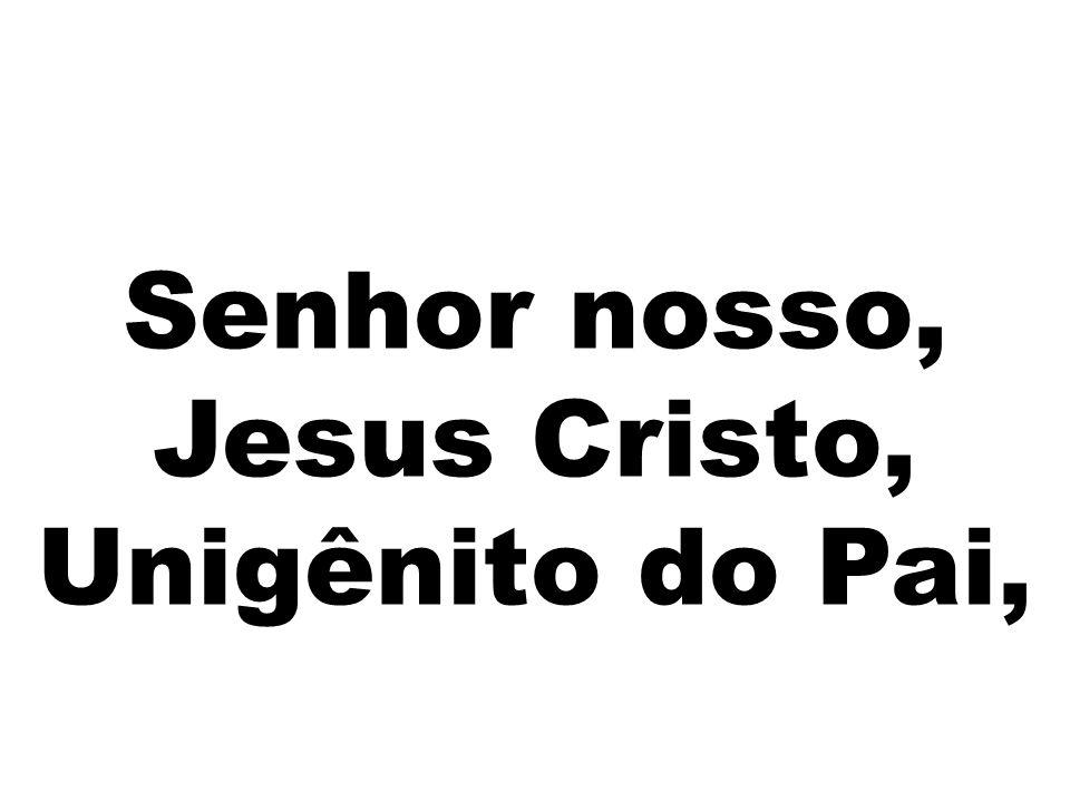 Senhor nosso, Jesus Cristo, Unigênito do Pai,
