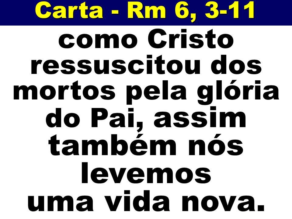 Carta - Rm 6, 3-11 como Cristo ressuscitou dos mortos pela glória do Pai, assim também nós levemos.