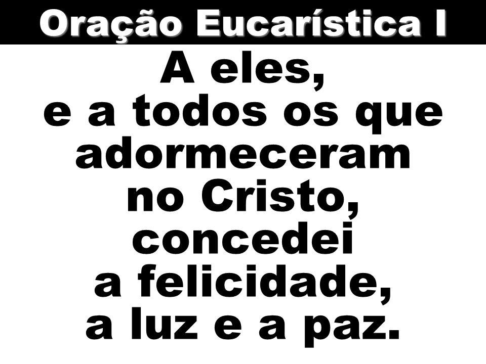 Oração Eucarística I A eles, e a todos os que adormeceram no Cristo, concedei a felicidade, a luz e a paz.