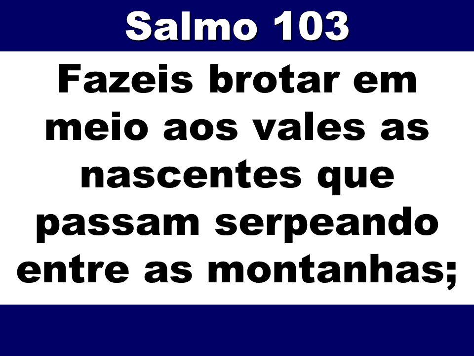 Salmo 103 Fazeis brotar em meio aos vales as nascentes que passam serpeando entre as montanhas;