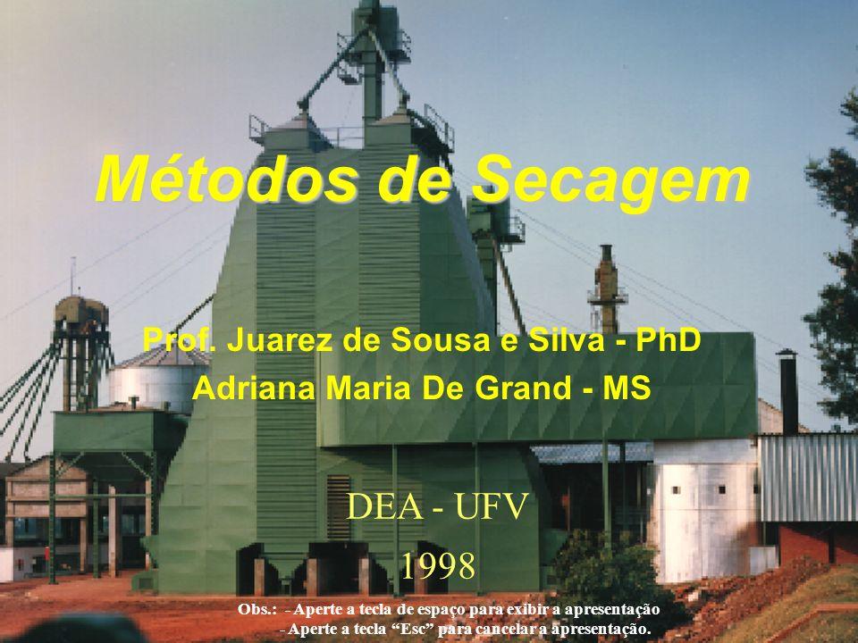 Prof. Juarez de Sousa e Silva - PhD Adriana Maria De Grand - MS