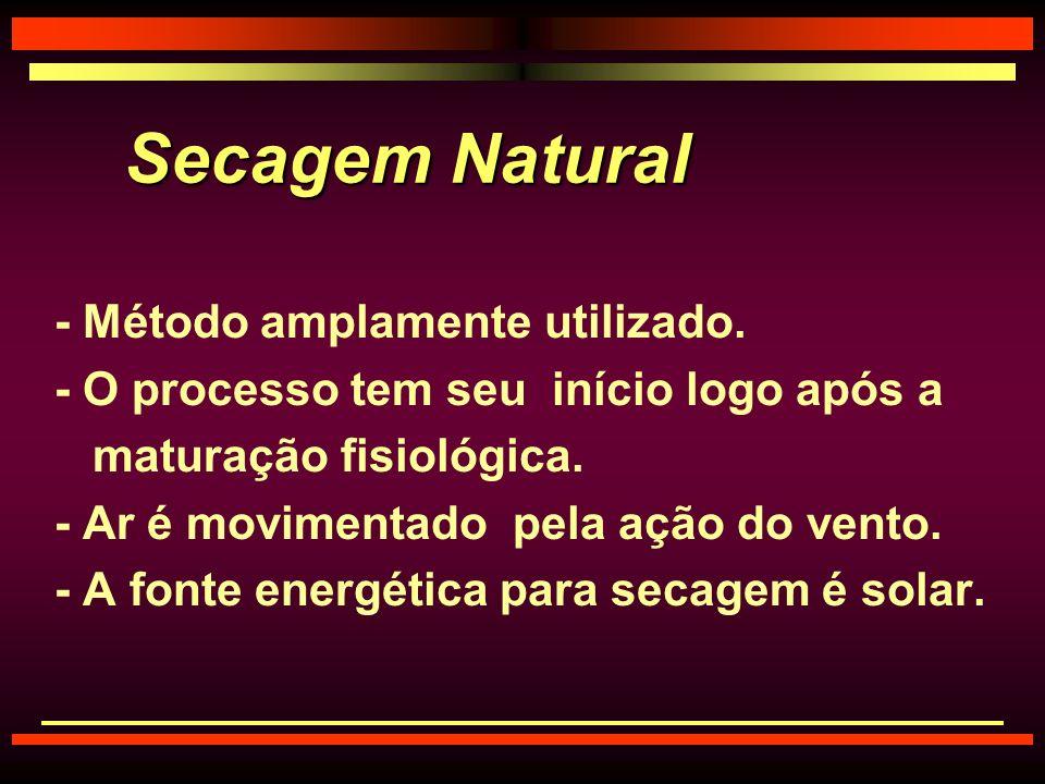 Secagem Natural - Método amplamente utilizado.